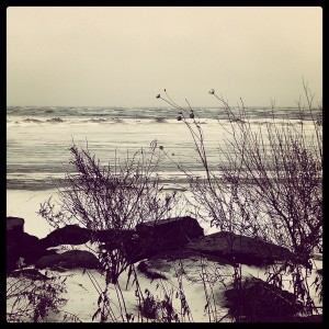 Lake Ontario, December 2013